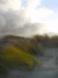 Dünen Nordsee Wangerooge