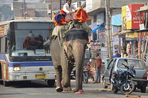 Indien alle Rundreisen