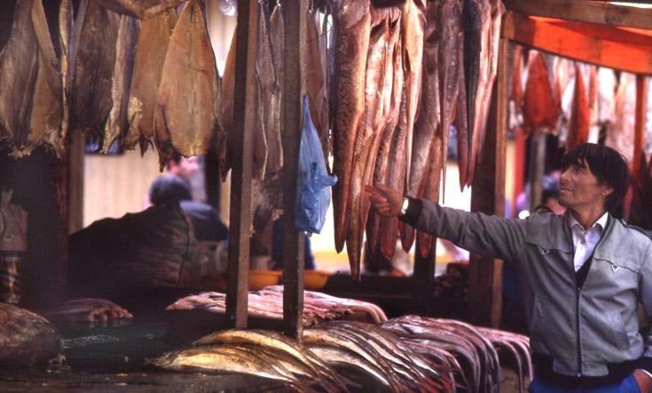 Fisch Markt in Santiago de Chile
